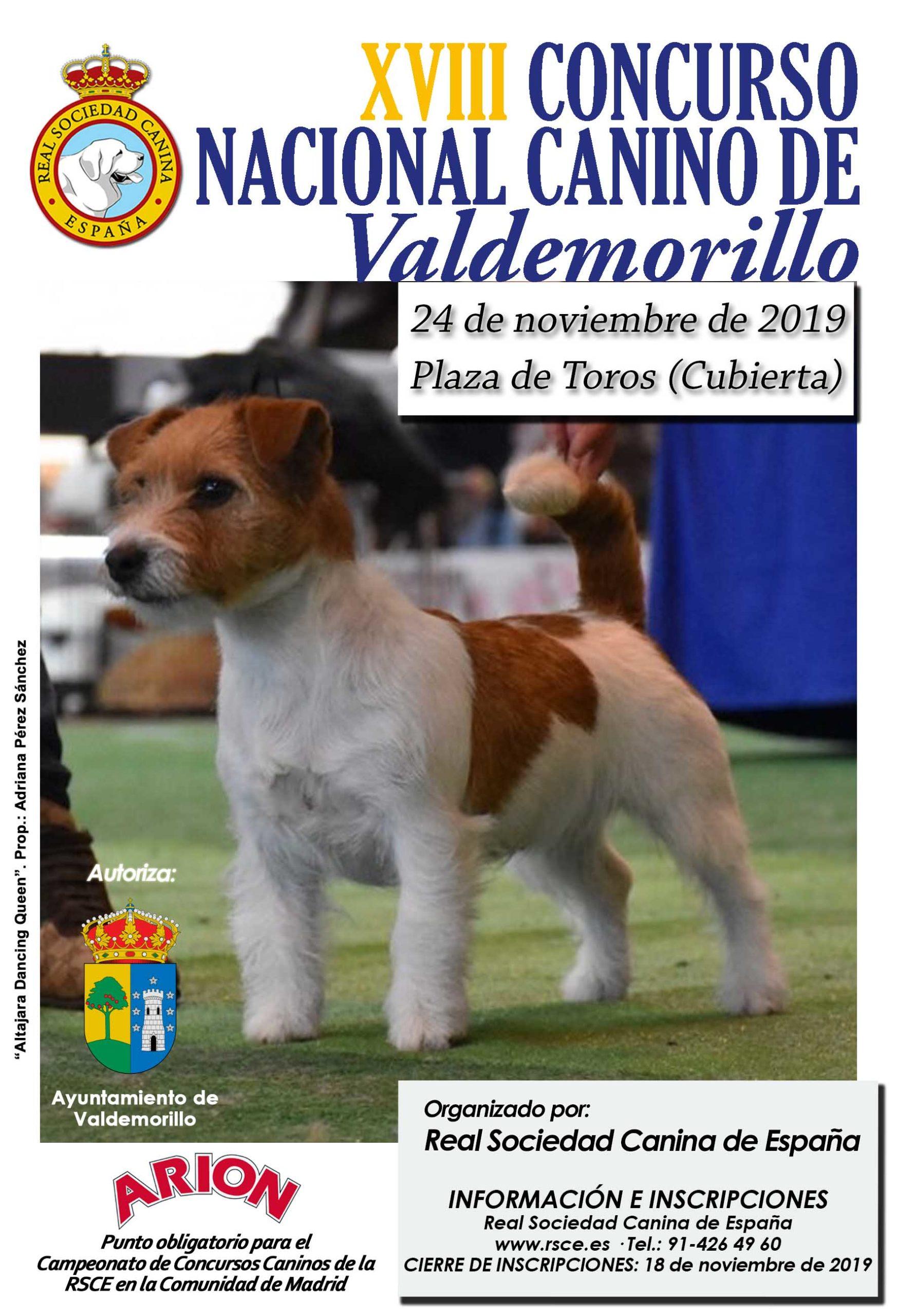Nueva gran cita en Valdemorillo  para el 24 de noviembre como escenario del XVIII Concurso Nacional Canino