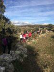Más de un centenar de personas,  de todas las edades,  marcharon contra la Esclerosis Múltiple  en Valdemorillo, doblando lo recaudado en la anterior convocatoria de la Concejalía de Juventud .
