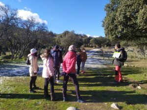 Valdemorillo se pone EN RUTA este 2021  para darse a conocer aún mejor  a través de su patrimonio histórico, biodiversidad y tradiciones