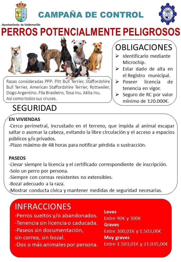 El Ayuntamiento pone en marcha  una campaña de control de perros potencialmente peligrosos para recordar las obligaciones que implica su tenencia  y advertir de las sanciones por su incumplimiento